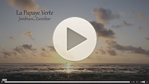 La-Papaye-Verte---Promotional-Video