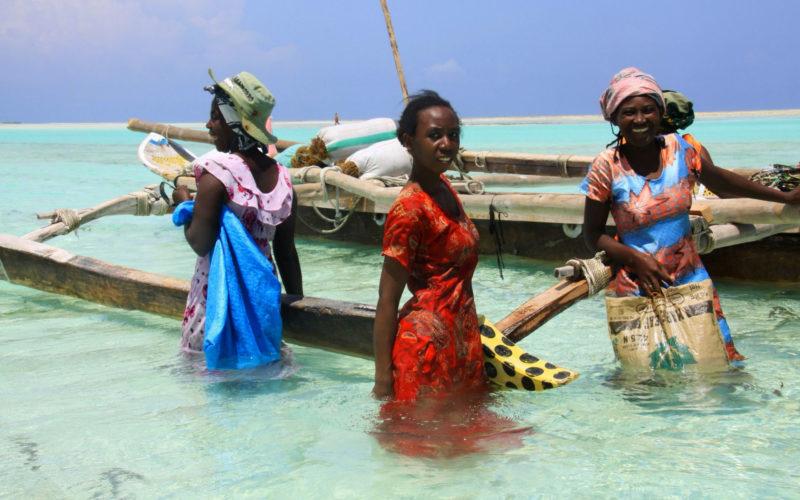 Cueilleuses d'algues sur la plage de Jambiani, Zanzibar