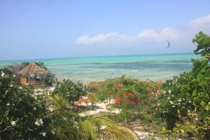 zanzibar-jambiani-papaye-verte-chambre-hotes-guesthouse-logement-hotel-1