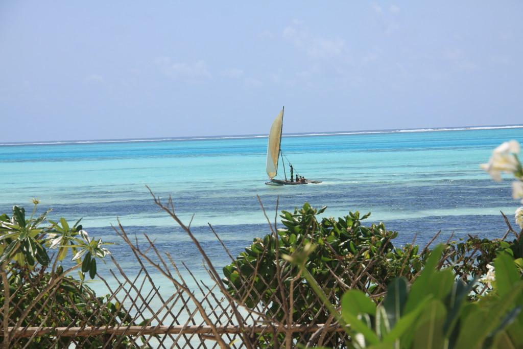 zanzibar-jambiani-papaye-verte-chambre-hotes-guesthouse-logement-hotel-10