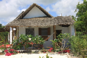 zanzibar-jambiani-papaye-verte-chambre-hotes-guesthouse-logement-hotel-12