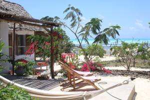 zanzibar-jambiani-papaye-verte-chambre-hotes-guesthouse-logement-hotel-16