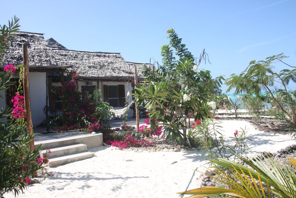 zanzibar-jambiani-papaye-verte-chambre-hotes-guesthouse-logement-hotel-5