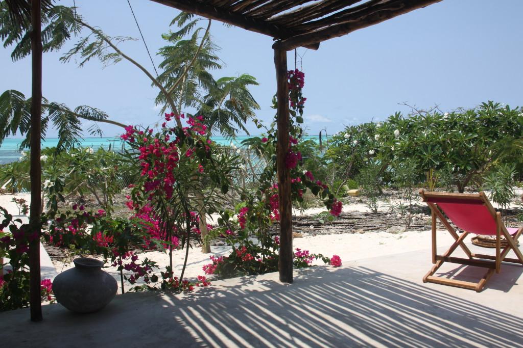 zanzibar-jambiani-papaye-verte-chambre-hotes-guesthouse-logement-hotel-6